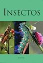 INSECTOS DE TODO RIPO (MINI GUIA) (SEMIDURA)