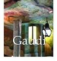 GAUDI (CARTONE) (ILUSTRADO EN INGLES)
