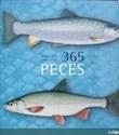 365 PECES (CARTONE)