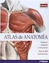 ATLAS DE ANATOMIA ORGANOS SISTEMAS Y ESTRUCTURAS (CON FAMOSAS SOBOTTA ILUSTRACIONES) (CARTONE)