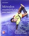 METODOS NUMERICOS PARA INGENIEROS (6 EDICION) (RUSTICA)