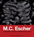 M C ESCHER DESPLEGANDO A ESCHER (CARTONE)