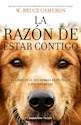 RAZON DE ESTAR CONTIGO UNA NOVELA PARA HUMANOS (COLECCION FICCION) (RUSTICA)