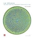 CELULA UNA GUIA VISUAL DEL COMPONENTE ESENCIAL DE LA VIDA (ILUSTRADO) (CARTONE)