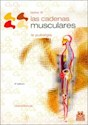 CADENAS MUSCULARES 3 LAS LA PUBALGIA