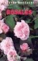 ROSALES (RUSTICO)