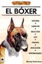 BOXER (HISTORIA CARACTER SELECCION)
