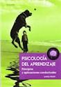 PSICOLOGIA DEL APRENDIZAJE PRINCIPIOS Y APLICACIONES CONDUCTUALES (RUSTICA)