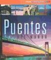 PUENTES DEL MUNDO (COLECCION ARQUITECTUM)