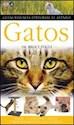 GATOS (GUIAS VISUALES)