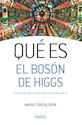 QUE ES EL BOSON DE HIGGS (8017007) (RUSTICA)