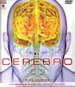 CEREBRO (GUIA ILUSTRADA DE SU ESTRUCTURA FUNCIONES Y TR  ASTORNOS) (INCLUYE DVD ROM)